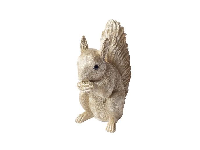 Eichhörnchen Spardose